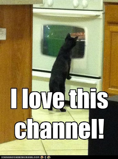 captions Cats food hungry noms oven watch - 6468667648