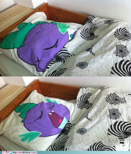 IRL,Pillow,sleep,spike
