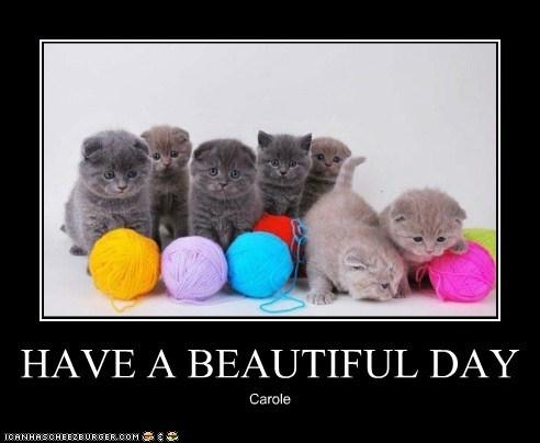 HAVE A BEAUTIFUL DAY Carole