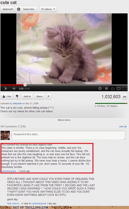 climax,cute cat,story,top comment,youtube
