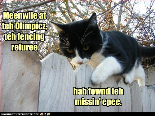 captions Cats epee Fencing London 2012 olympics pun - 6469313024