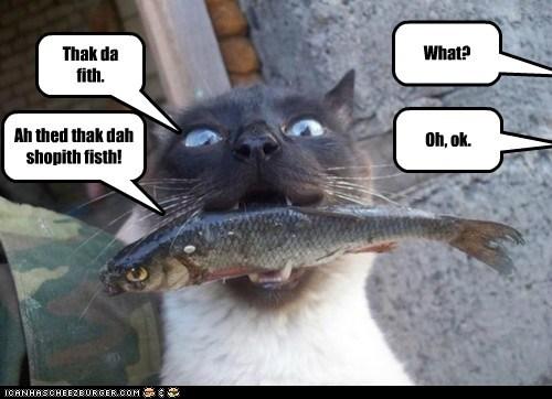Thak da fith. What? Ah thed thak dah shopith fisth! Oh, ok.