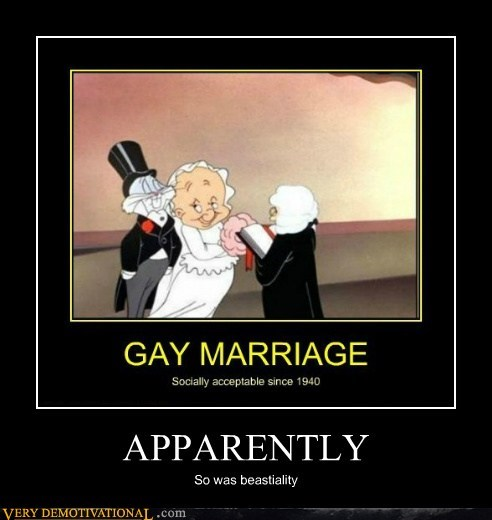 apparently,gay marriage,hilarious,looney tunes