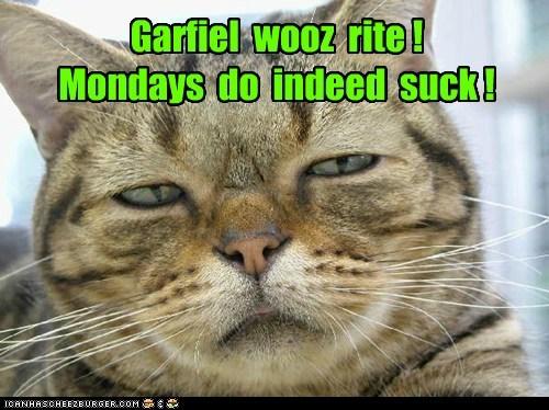 Garfiel wooz rite ! Mondays do indeed suck !