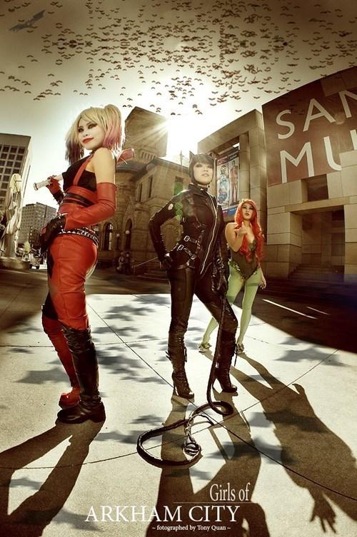 batman catwoman cosplay DC Harley Quinn poison ivy superheroes - 6469682944