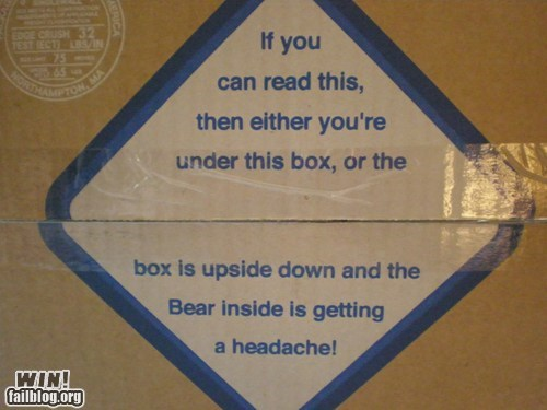 bear,package,right side up,sign,tape