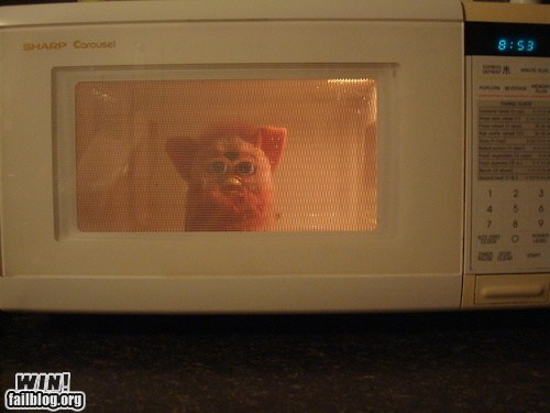 furby,g rated,microwave,nostalgia,toy,whoops,win