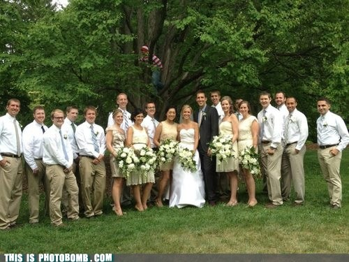 awesome tree wedding wheres waldo - 6470016256