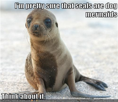 captions,dogs,makes sense,mermaids,seal,similar,think about it