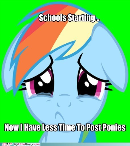 back to school meme post ponies school season 3 - 6470215168