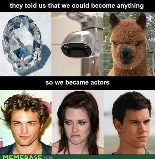 twilight,actors,diamonds,llama