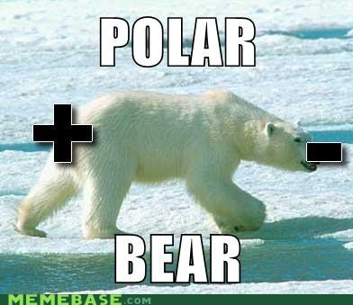 bear double meaning literalism minus negative plus polar polarity positive shoop