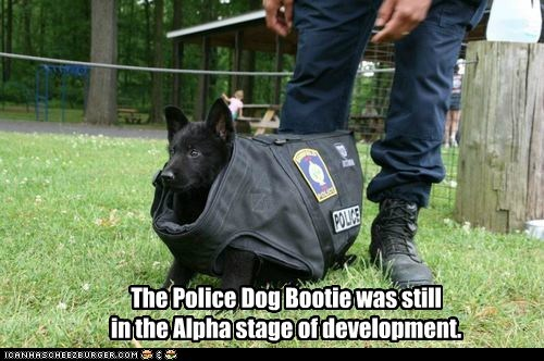 The Police Dog Bootie was still in the Alpha stage of development.
