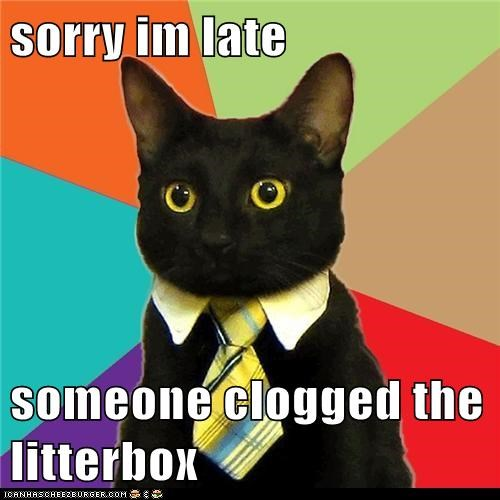 sorry im late someone clogged the litterbox