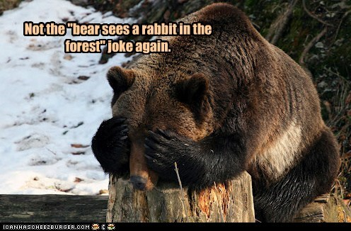 bear,Forest,frustration,joke,not again,rabbit