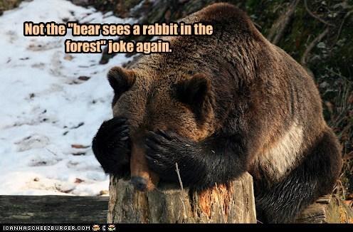 bear Forest frustration joke not again rabbit - 6472207360