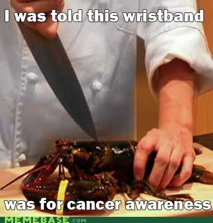 cancer awareness lobster Memes wristband - 6472364288