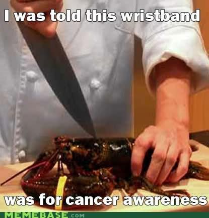 cancer awareness lobster Memes wristband - 6472364288