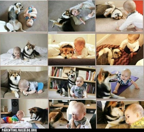 baby dogs g rated Hall of Fame Parenting FAILS - 6472529152
