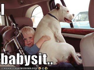 babysitting,kids,whatbreed