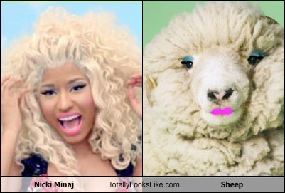 animal,celeb,funny,nicki minaj,pop,sheep,TLL