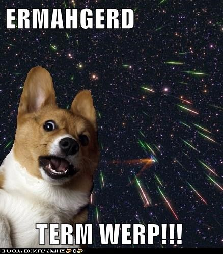 corgi,dogs,Ermahgerd,galaxy,stars in the universe,time space,time warp