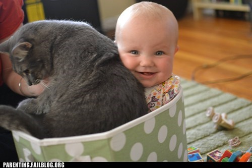 baby bag cat - 6472864256