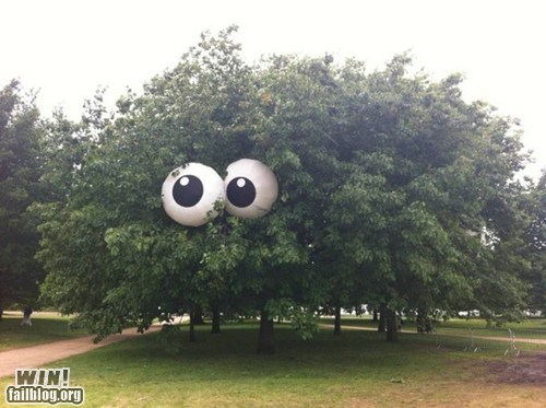 googly eyes happy chair Street Art tree - 6472996096