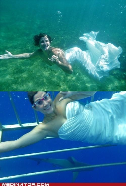 funny wedding photos Hawaii ocean sea underwater wedding dress - 6473061376
