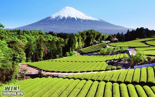 Japan mother nature ftw mt-fuji photography Travel wincation - 6473637632