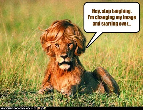 changing,haircut,image,lauging,lion,start over