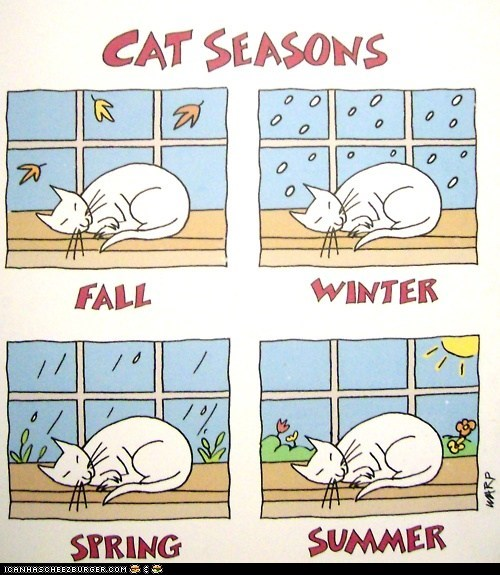 comics,fall,illustrations,seasons,sleep,sleeping,spring,summer,winter