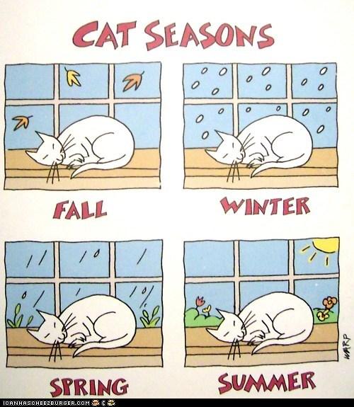 comics fall illustrations seasons sleep sleeping spring summer winter - 6475782400