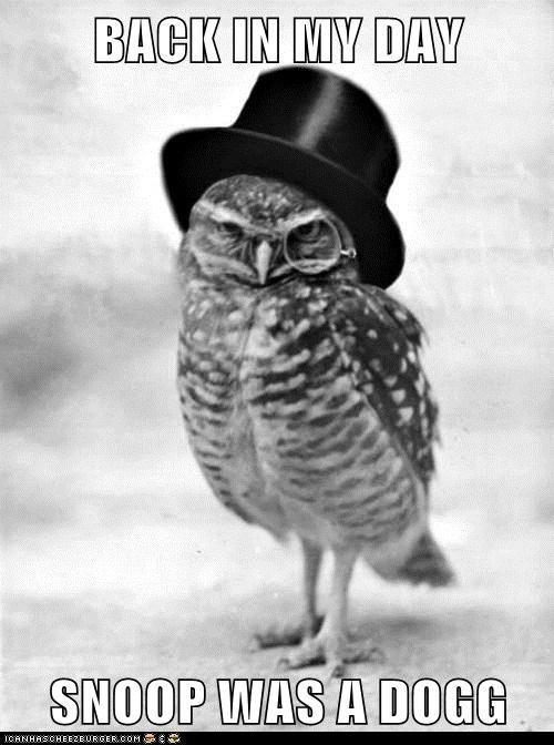hat,monocle,Owl,snoop dogg,snoop lion