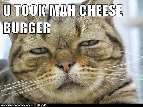 Cheezburger Image 6477494784