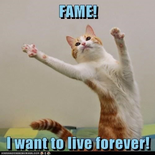 captions,Cats,dance,fame,forever,i want to live forever