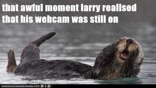 embarrassed,forgot,oh no,oops,otter,that moment,webcam