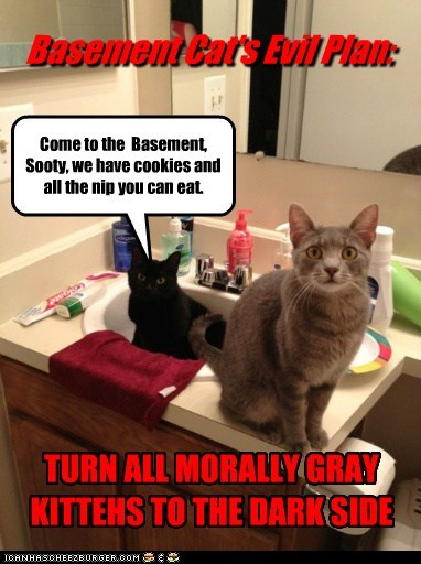 Basement Cat's Evil Plan: TURN ALL MORALLY GRAY KITTEHS TO THE DARK SIDE Come to the Basement, Sooty, we have cookies and all the nip you can eat.