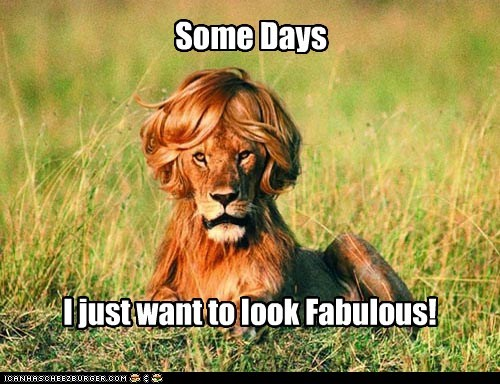 every day,fabulous,haircut,lion,some days