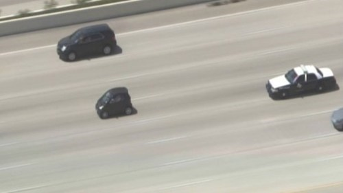 adorable police chase,smart car chase