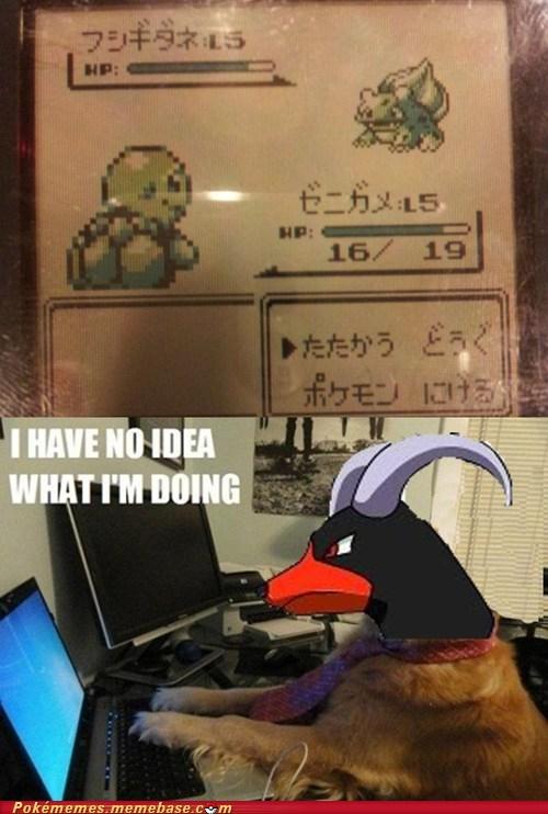 i-have-no-idea-what-im-d imports meme Memes - 6478786816