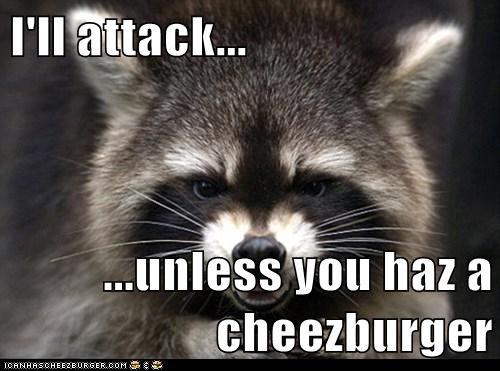 Cheezburger Image 6478970880