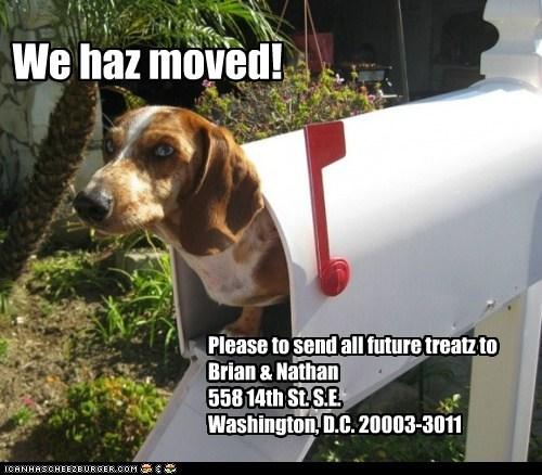 We haz moved! Please to send all future treatz to Brian & Nathan 558 14th St. S.E. Washington, D.C. 20003-3011
