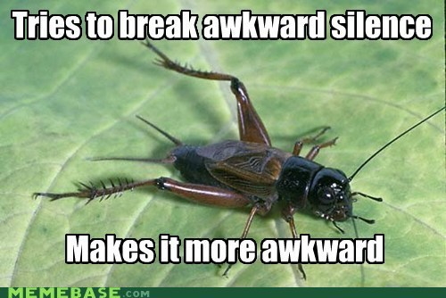 Awkward awkward silence Memes misunderstood cricket - 6479193344