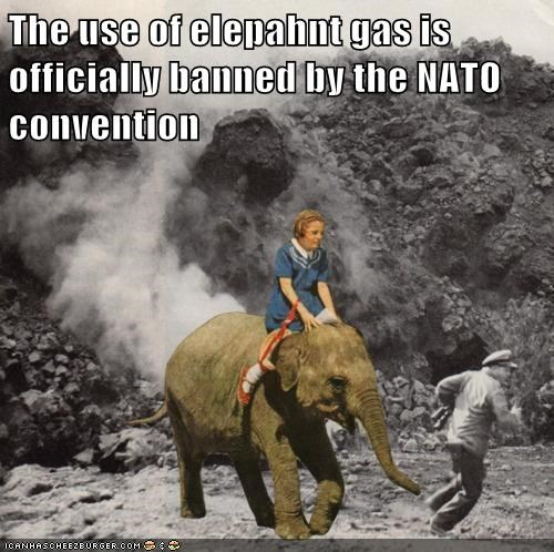 elephant gas girl NATO war - 6479481088