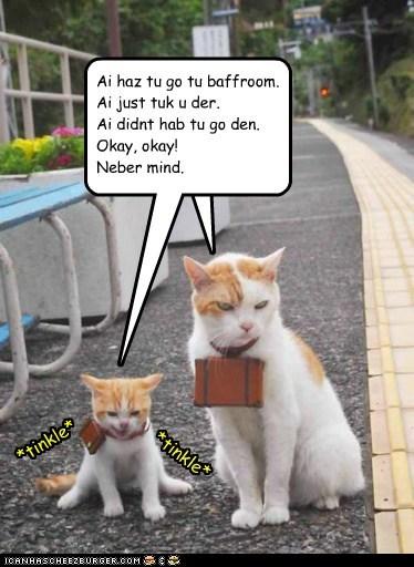 Cheezburger Image 6480160768