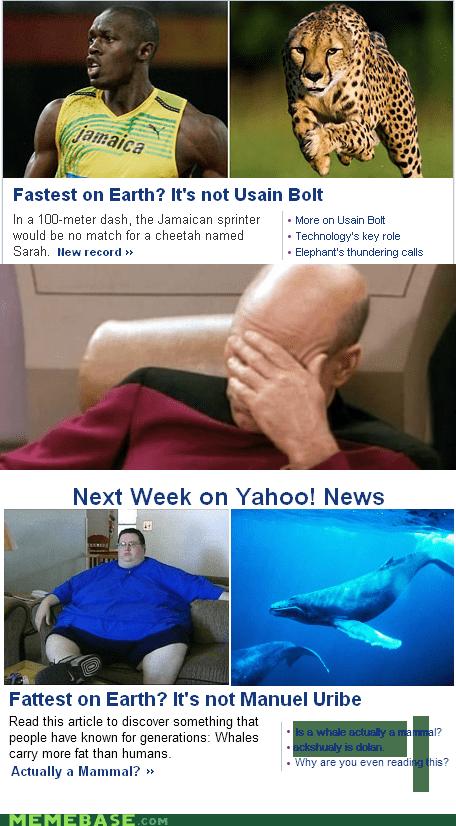 fast,fat,Memes,news,picard facepalm