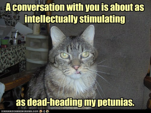 smart kitteh is smart