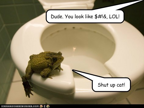 annoyed cat crap dude frog mocking poop shut up toilet - 6480837376