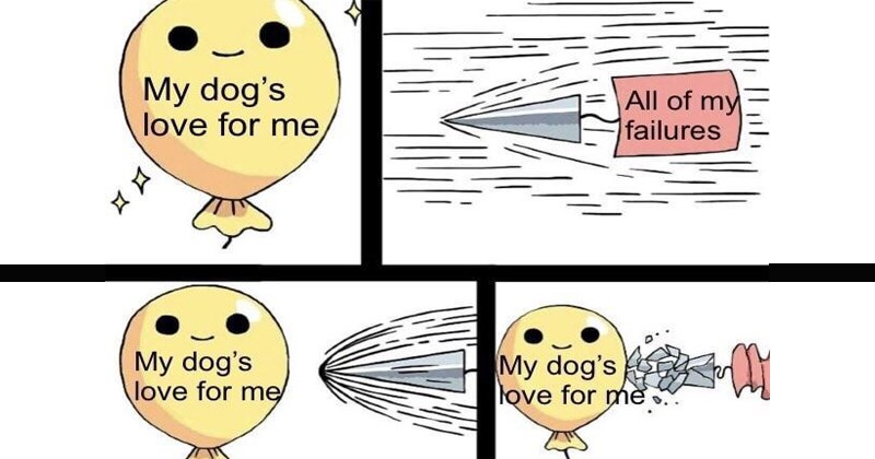 cute memes indestructible balloon flat earth funny comics dog memes flat earth memes web comics wtf uplifting positive attitude trending memes know your meme insecurity mental health - 6480901